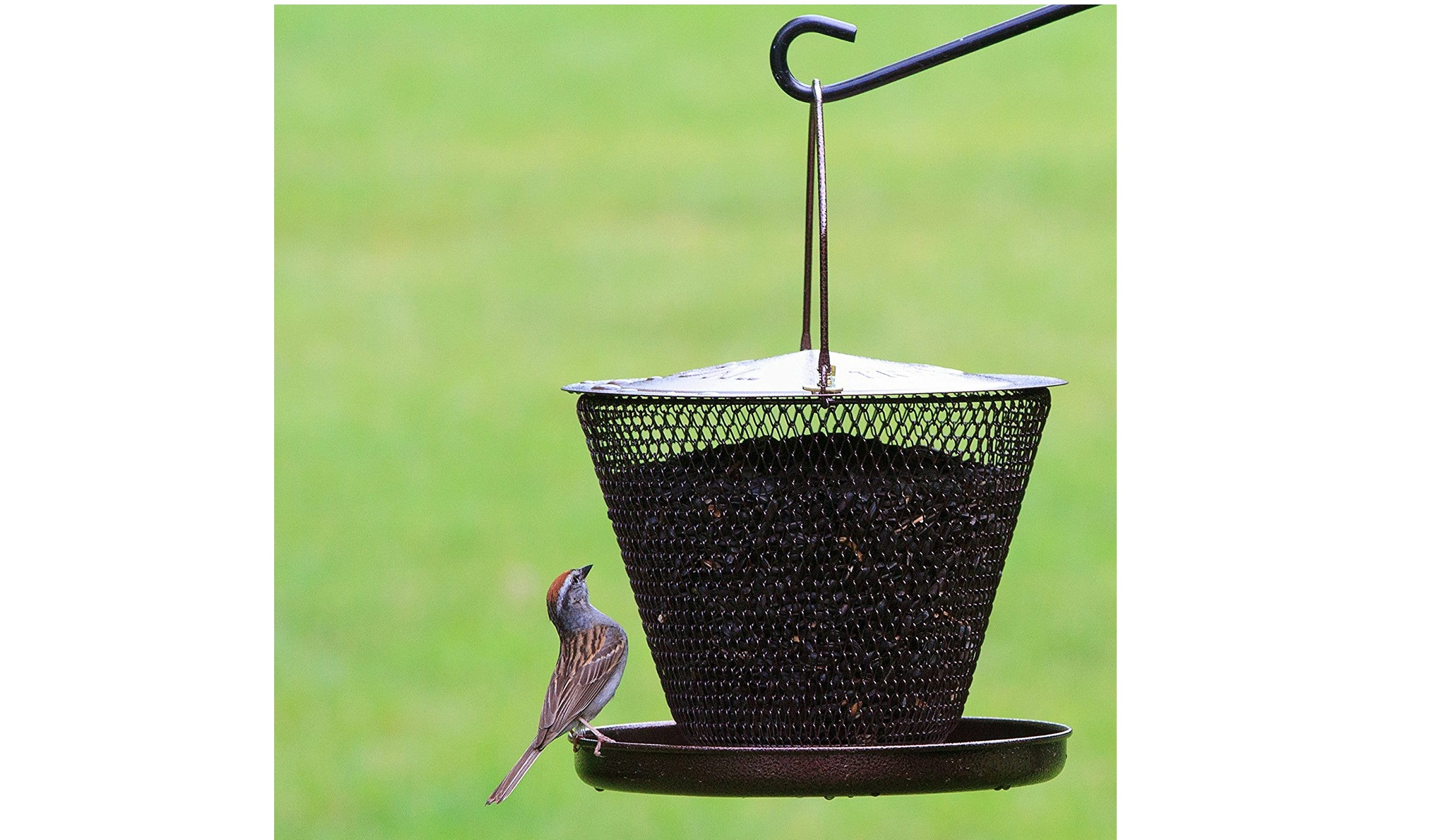 solar bird feeder case analysis 7 things you should never do to your dog more slideshows from petmd 8 ways to help dogs with back pain 8 dog car safety mistakes to avoid 6.