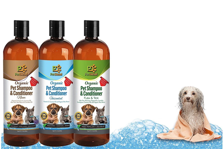 Natural Groomer Dog Shampoo