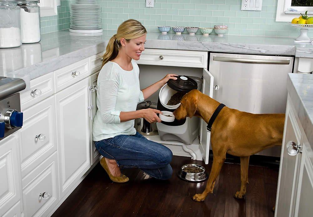 Why Get A Dog Food Storage Bin?